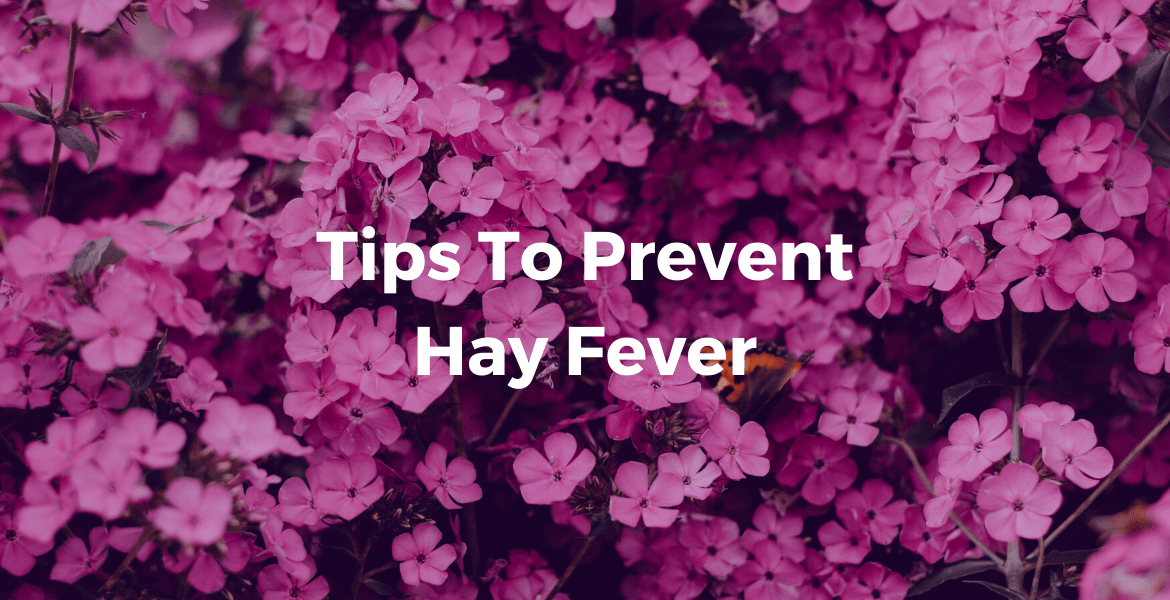 """Text: """"Tips To Prevent Hay Fever"""" against background of purple flowers"""